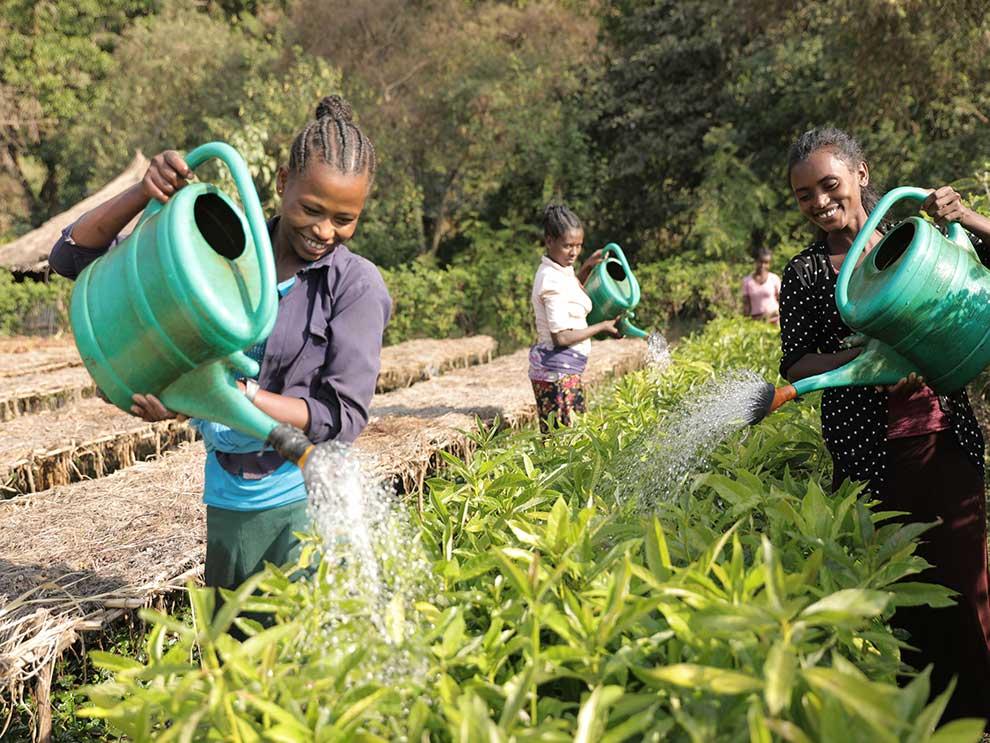 3 Frauen in Äthiopien gießen Pflanzen in einer Baumzucht
