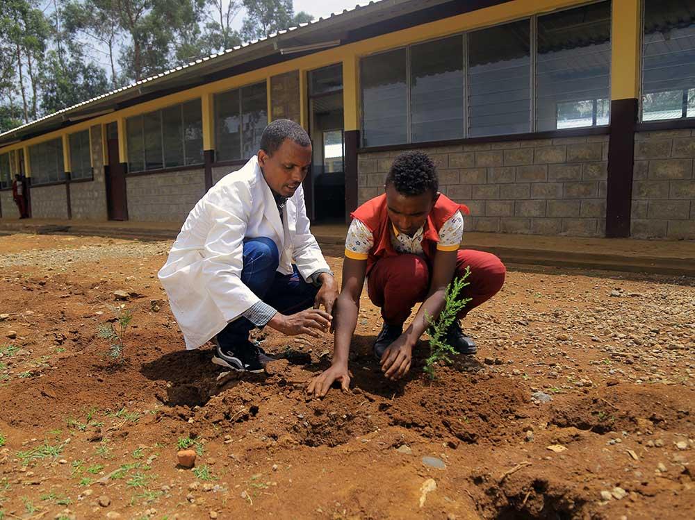 Ein Lehrer und ein Schüler pflanzen einen Baum