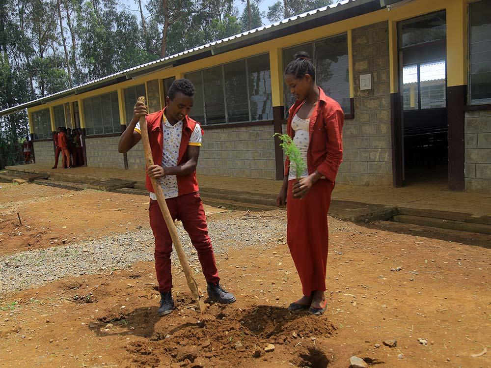 Zwei Schüler pflanzen Bäume