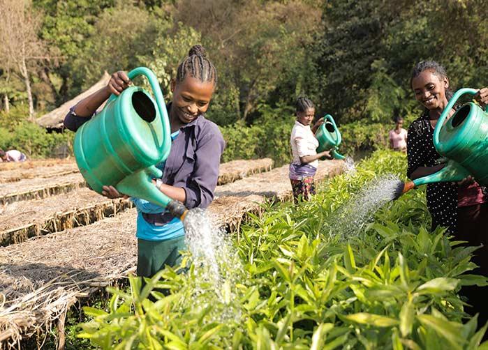 3 Frauen gießen die Pflanzen in einer Baumschule