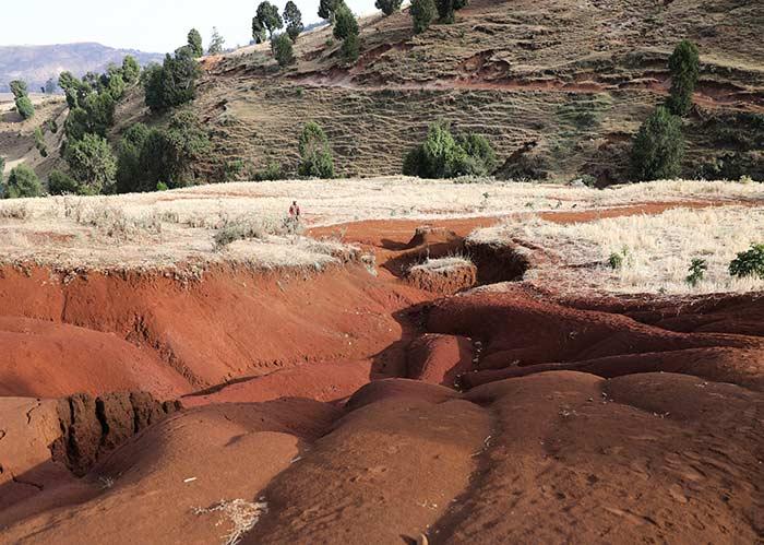 Erosionsgraben in Äthiopien mit roter Erde