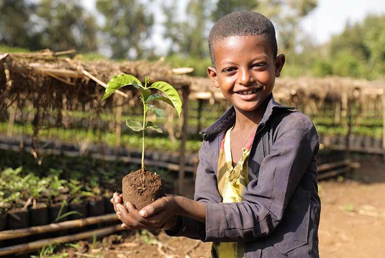 Junge in Baumschule in Äthiopien mit Setzling in der Hand