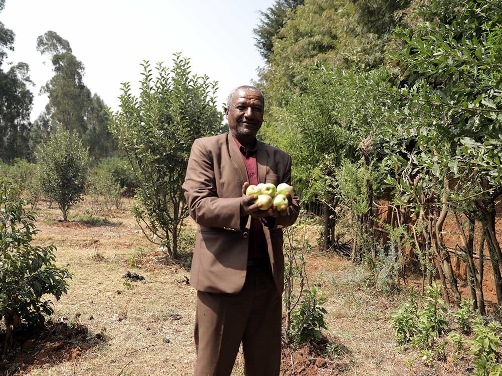 Ein Mann hält Äpfel.