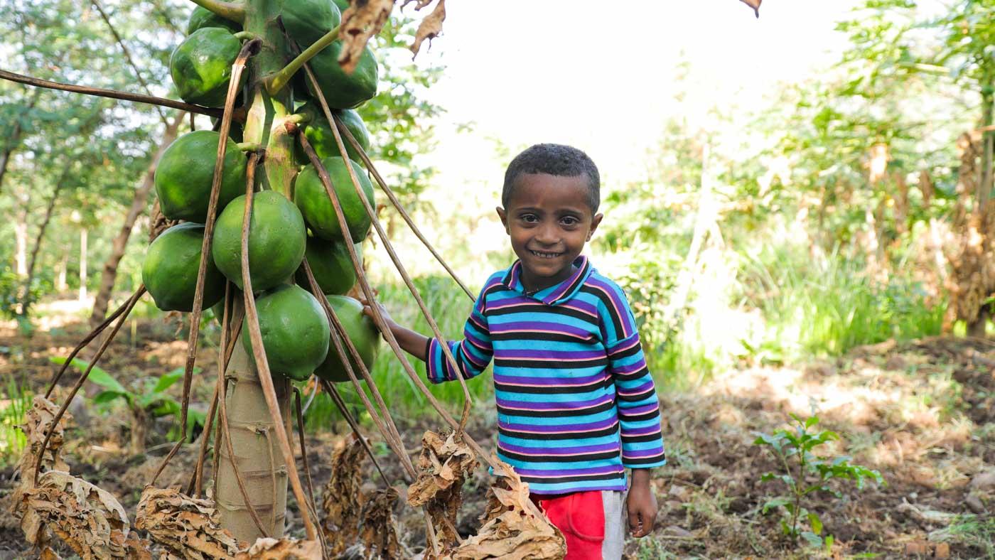 Junge im Garten mit Papaya Baum