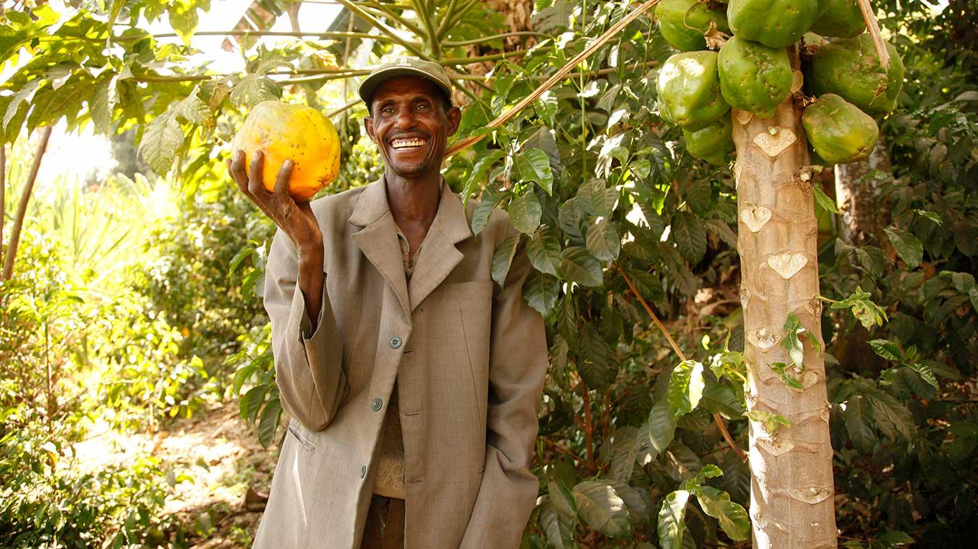 Mann in Äthiopien mit Papaya in der Hand vor einem papaya baum