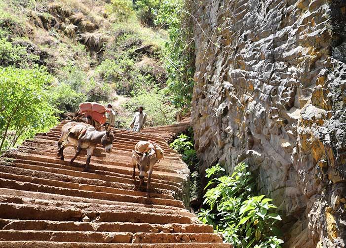 Treppen in Äthiopien mit drei Eseln und zwei Menschen