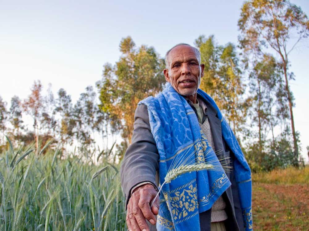 Mann in Äthiopien hält Getreide in die Kamera